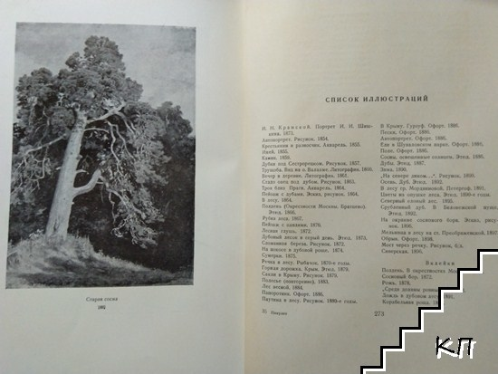 И. И. Шишкин (Допълнителна снимка 2)