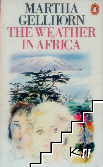 The Weather In Africa