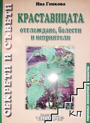 Краставицата. Отглеждане, болести и неприятели