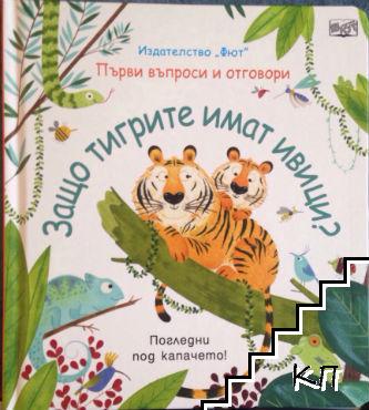 Първи въпроси и отговори: Защо тигрите имат ивици?