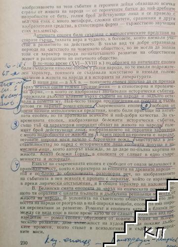 Теория на литературата (Допълнителна снимка 1)