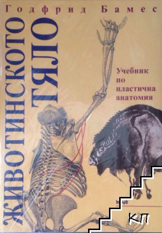 Животинското тяло