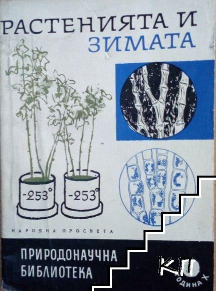 Растенията и зимата