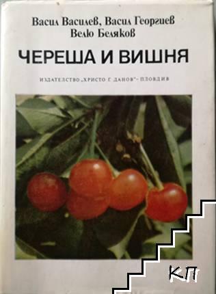 Череша и вишня / Малка помология. Семкови овощни видове / Ягодоплодните култури в нашата градина