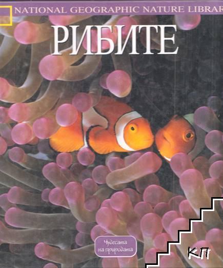 Рибите