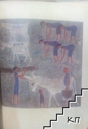 Conteporary Art in Egypt (Допълнителна снимка 3)