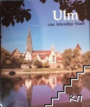 Ulm eine lebendige Stadt