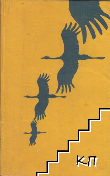 Птици долитат; Далечини далечни