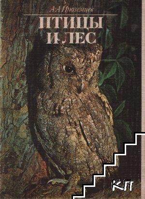 Птицы и лес