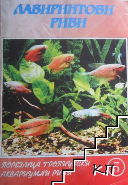 Лабиринтови риби