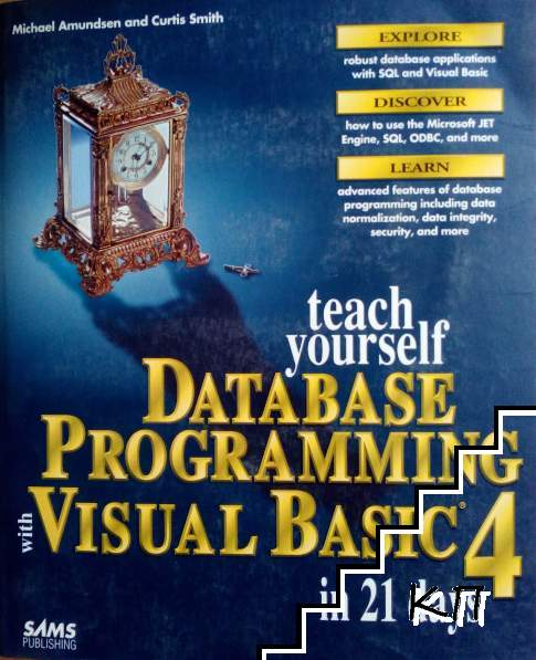 Teach yourself database programming with visual basic 4 in 21 days
