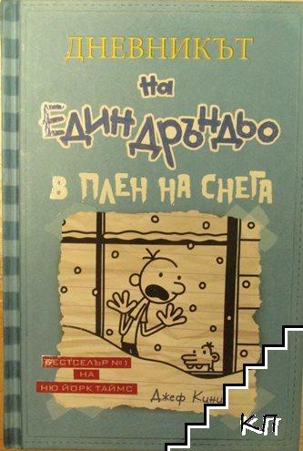 Дневникът на един Дръндьо. Книга 6: В плен на снега