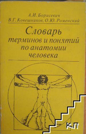 Словарь терминов и понятий по анатомии человека