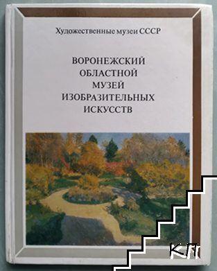 Воронежский областной музей изобразительных искусств