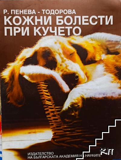 Кожни болести при кучето