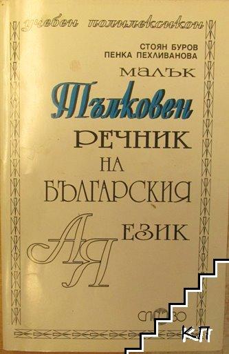 Малък тълковен речник на българския език