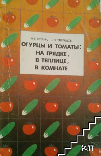Огурцы и томаты: на грядке, в теплице, в команате