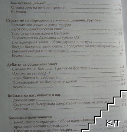 Размишления по българските работи (Допълнителна снимка 3)