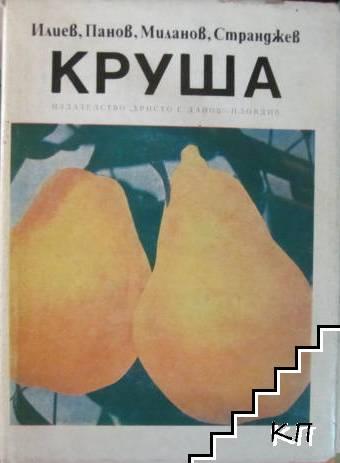 Круша