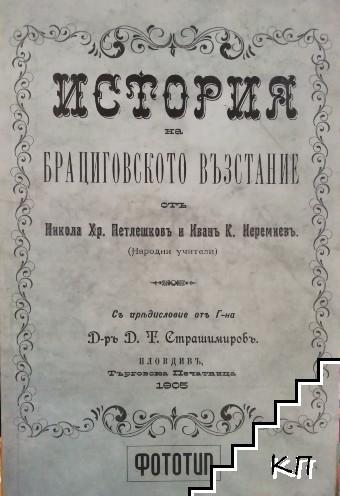 История на Брациговското възстание