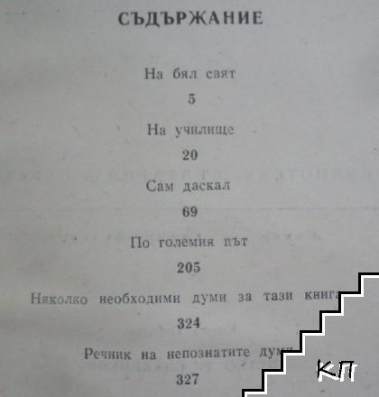 Петко Р. Славейков (Допълнителна снимка 1)