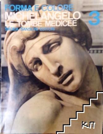 Forma e colore Michelangelo. Le Tombe Medicee