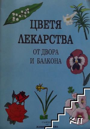 Цветя, лекарства от двора и балкона