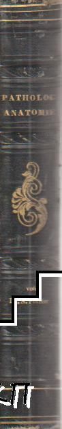 Lehrbuch der pathologischen anatomie (Допълнителна снимка 2)