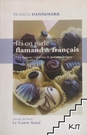 Ici on parle flamand & français