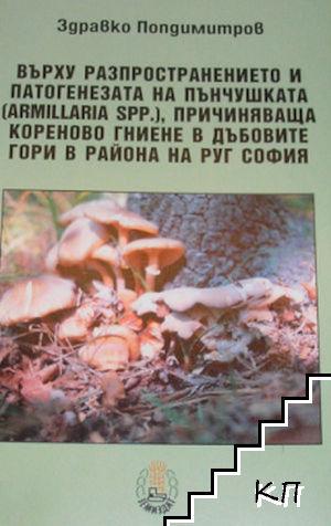 Върху разпространението и патогенезата на пънчушката, причиняваща кореново гниене в дъбовите гори в района на РУГ София