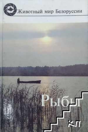 Животный мир белоруссии. Рыбы