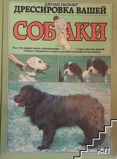 Дрессировка вашей собаки