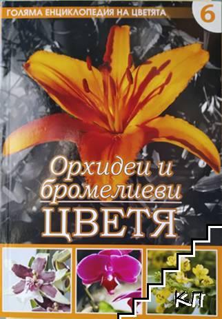 Голяма енциклопедия на цветята. Том 6: Орхидеи и бромелиеви цветя