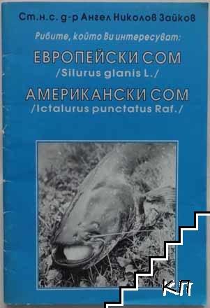 Рибите, които Ви интересуват: Европейски сом/Silurus glanis L./, американски сом/Ictalurus punctatus Raf.