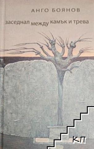 Заседнал между камък и трева