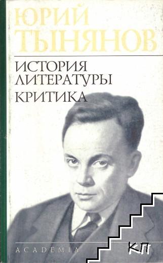 История литературы. Критика