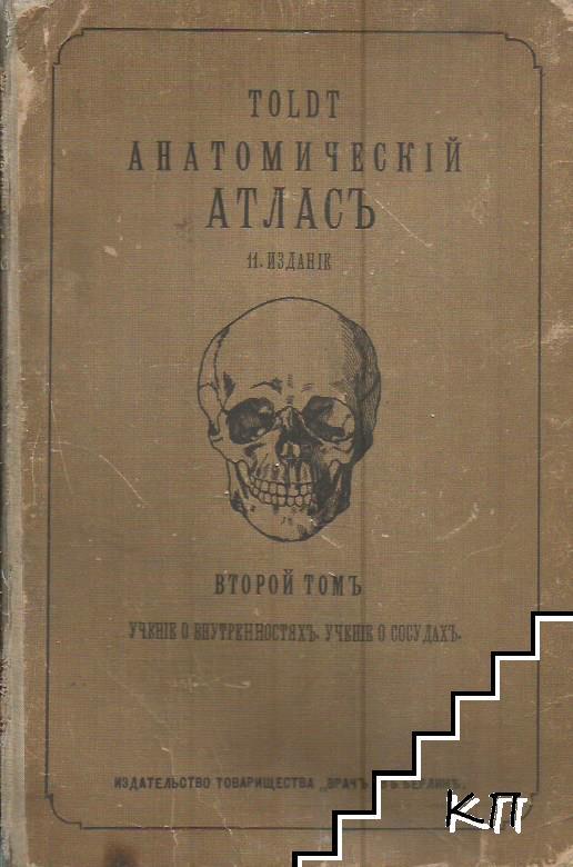 TOLDT Анатомическiй атласъ для студентовъ и врачей. Томъ 2