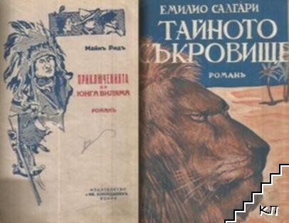 Приключенията на юнга Виляма / Тайното съкровище