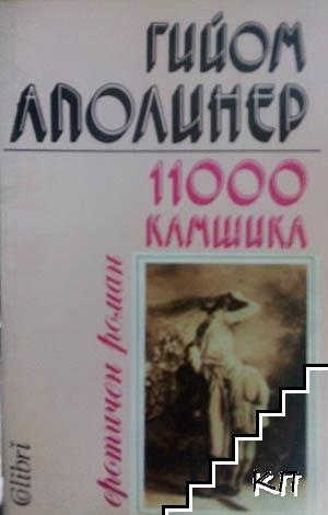 11000 камшика