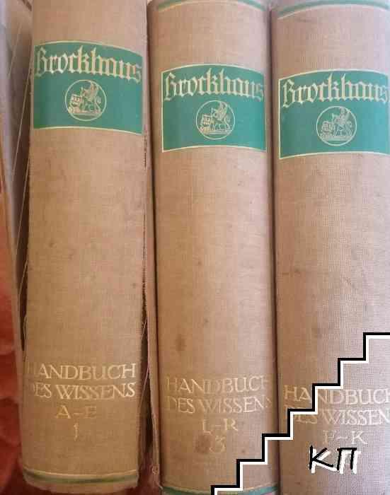 Brorkhaus: Handbuch des Wissens in vier Banden. Band 1-3