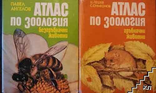 Атлас по зоология: Гръбначни животни / Атлас по зоология: Безгръбначни животни