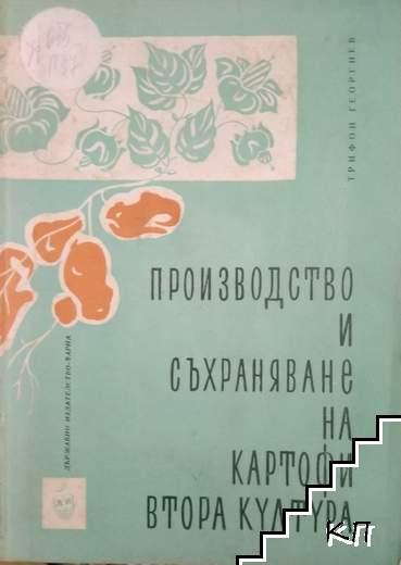 Производство и съхраняване на картофи втора култура